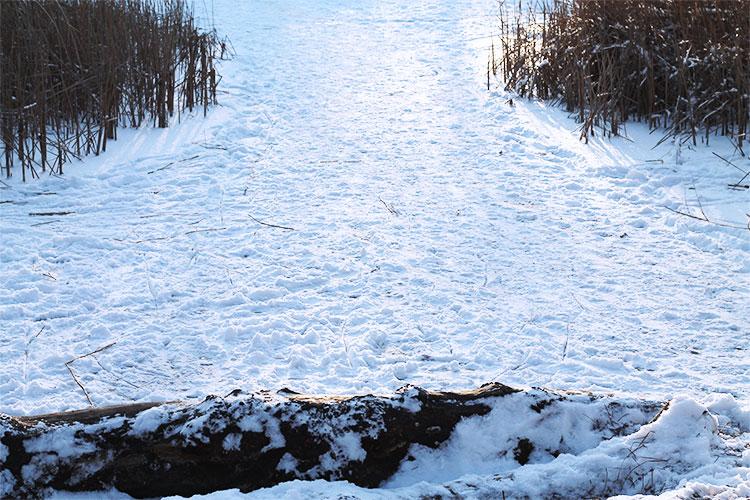kardiaserena-winterwonderland-austrianblogger-viennablogger-plussizeblogger-donaustadt-schneelandschaft