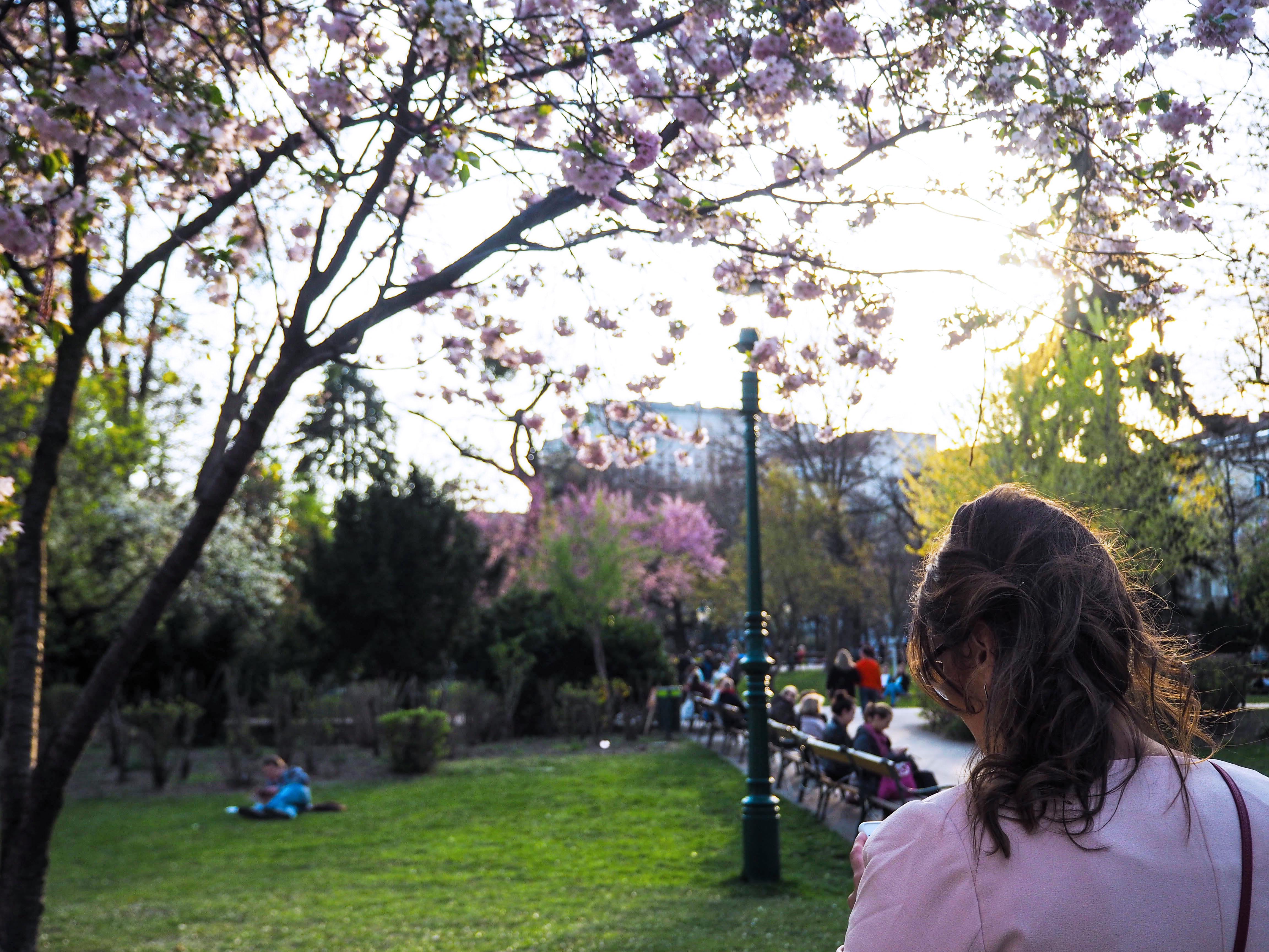 cherry-blossom-sakura-spring-look-rosé-mantel-h&m-tellerrock-fashion-my-look-plus-size-blogger-kardiaserena-furla-bag