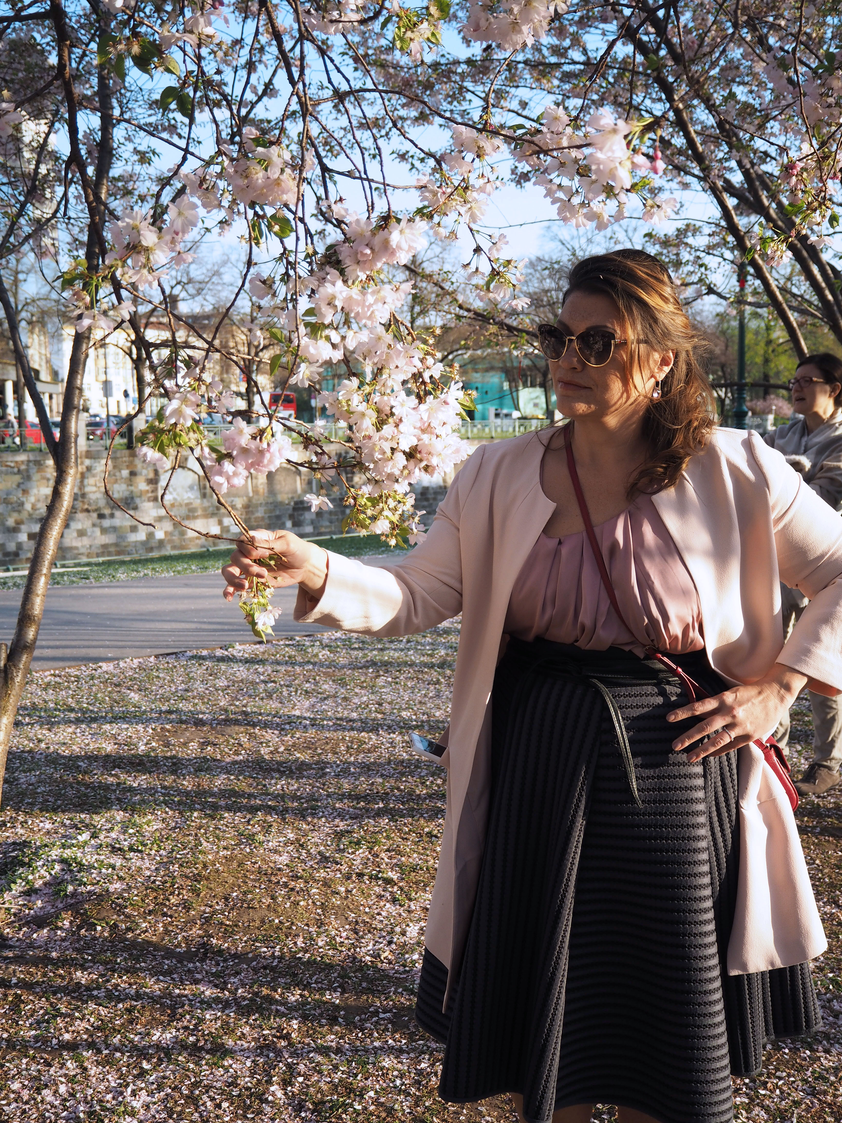 cherry-blossom-sakura-spring-look-rosé-mantel-h&m-tellerrock-fashion-my-look-plus-size-blogger-kardiaserena-marc-jacobs-sonnenbrille-coat