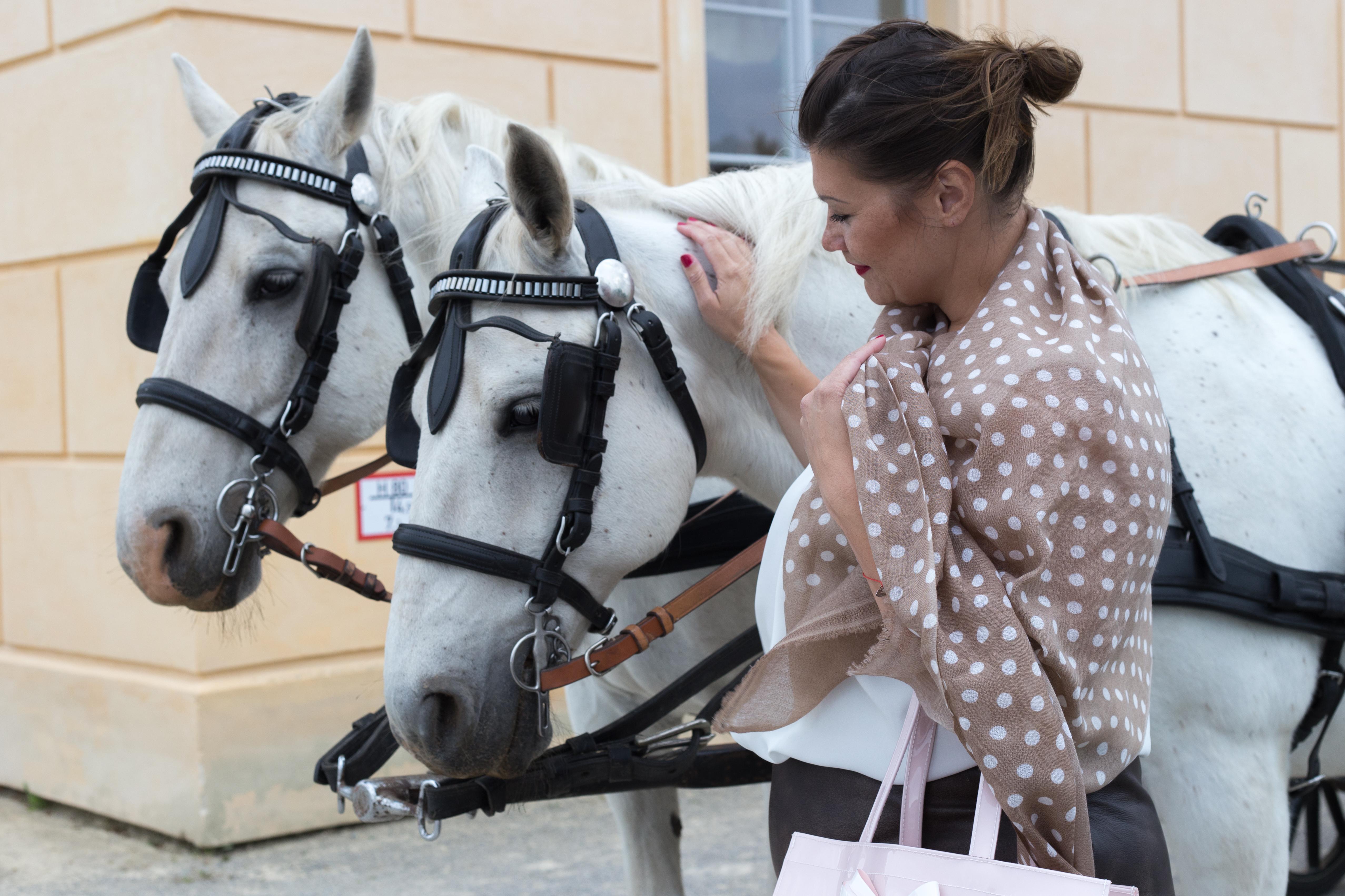 kardiaserena vintage look leder skirt dots scarf maheela ted baker schloss hof igersaustria peeptoes caprice horses