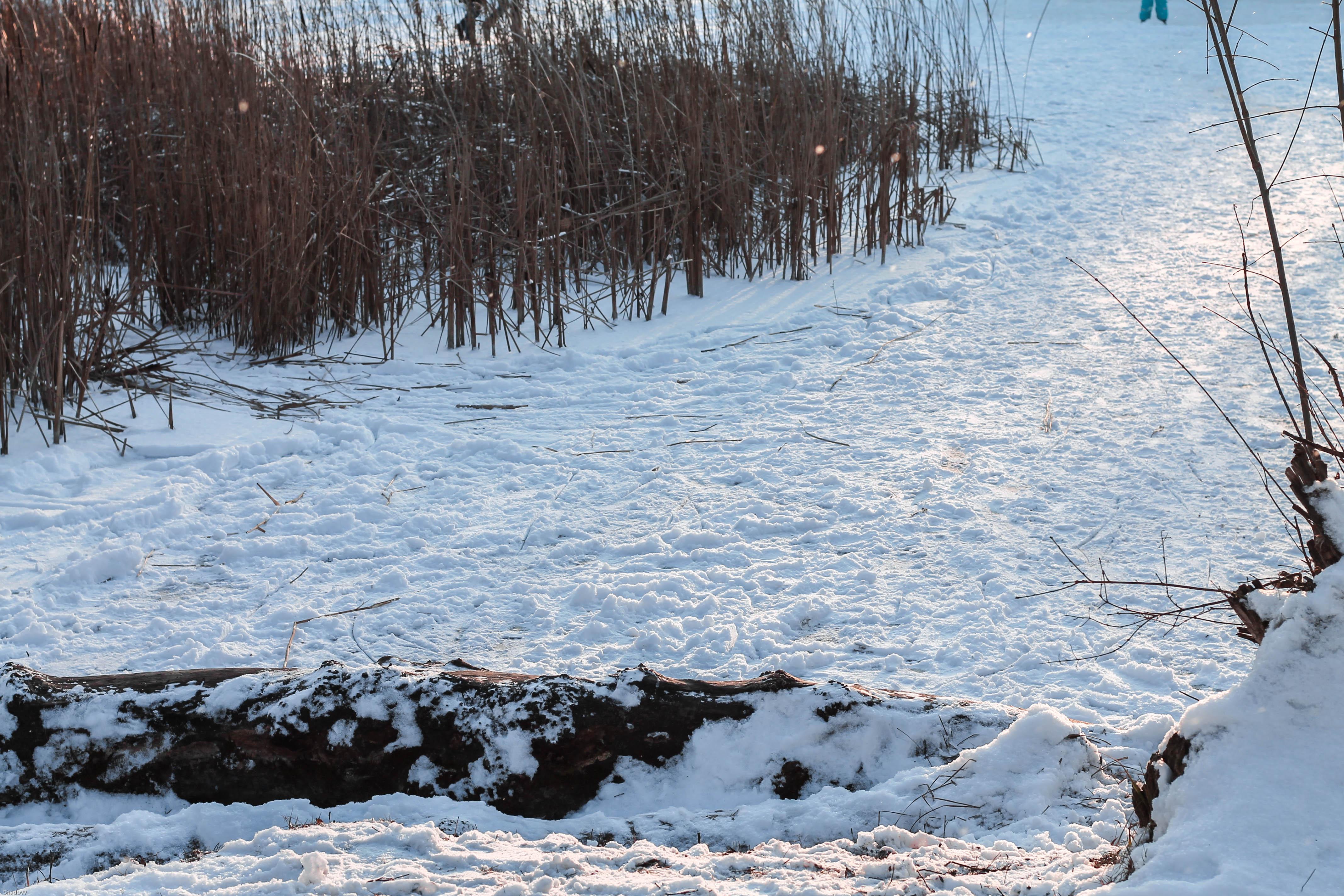 xmas wishlist kardiaserena winterwonderland